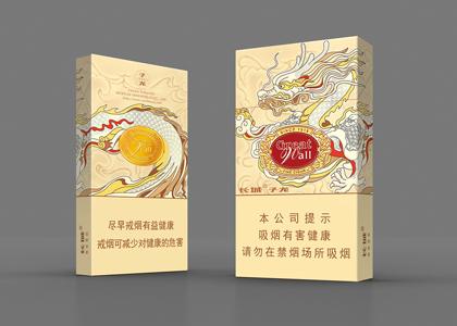 """白袍银甲""""赵子龙"""""""
